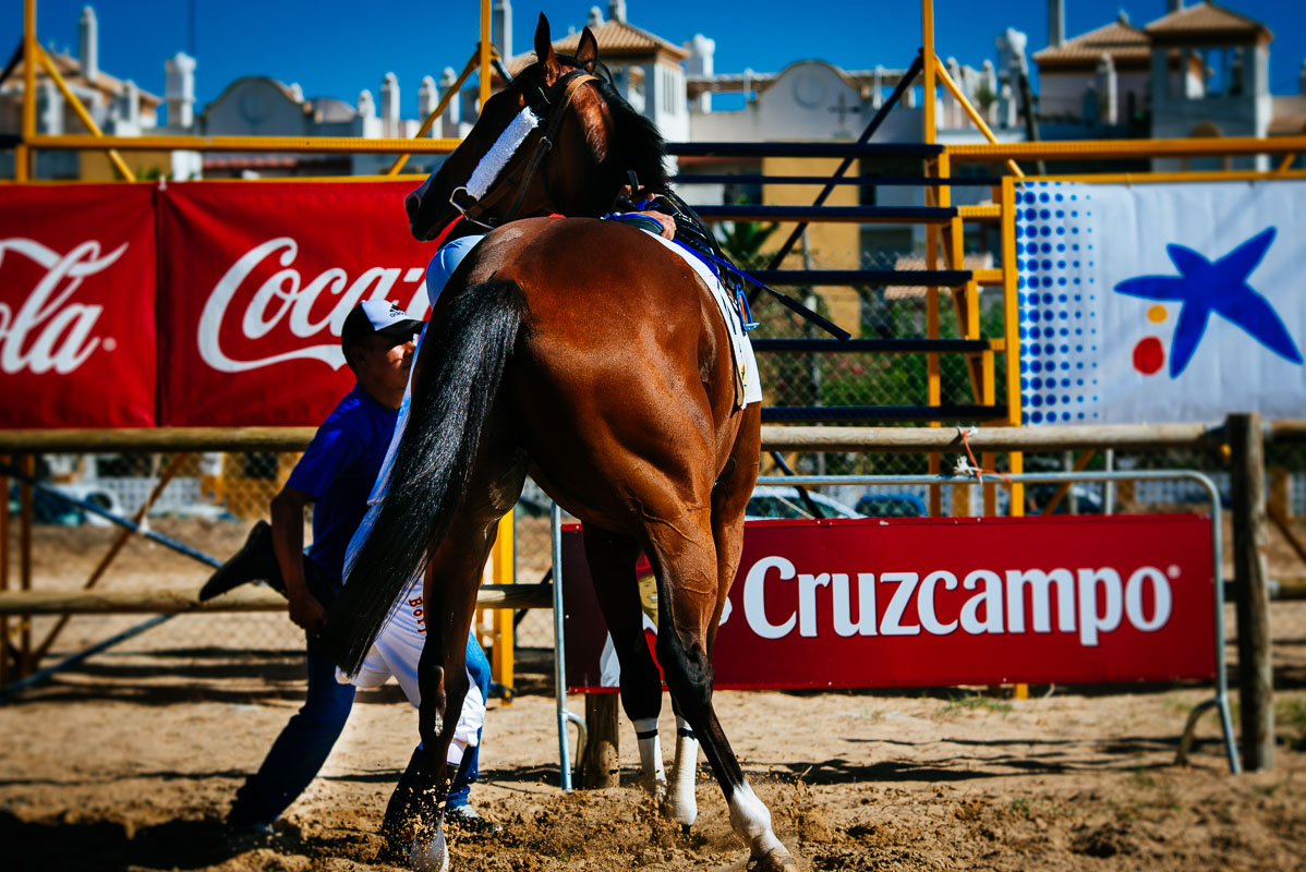 Horse Racing in Sanlucar de Barrameda - Anabel Vargas Photography12