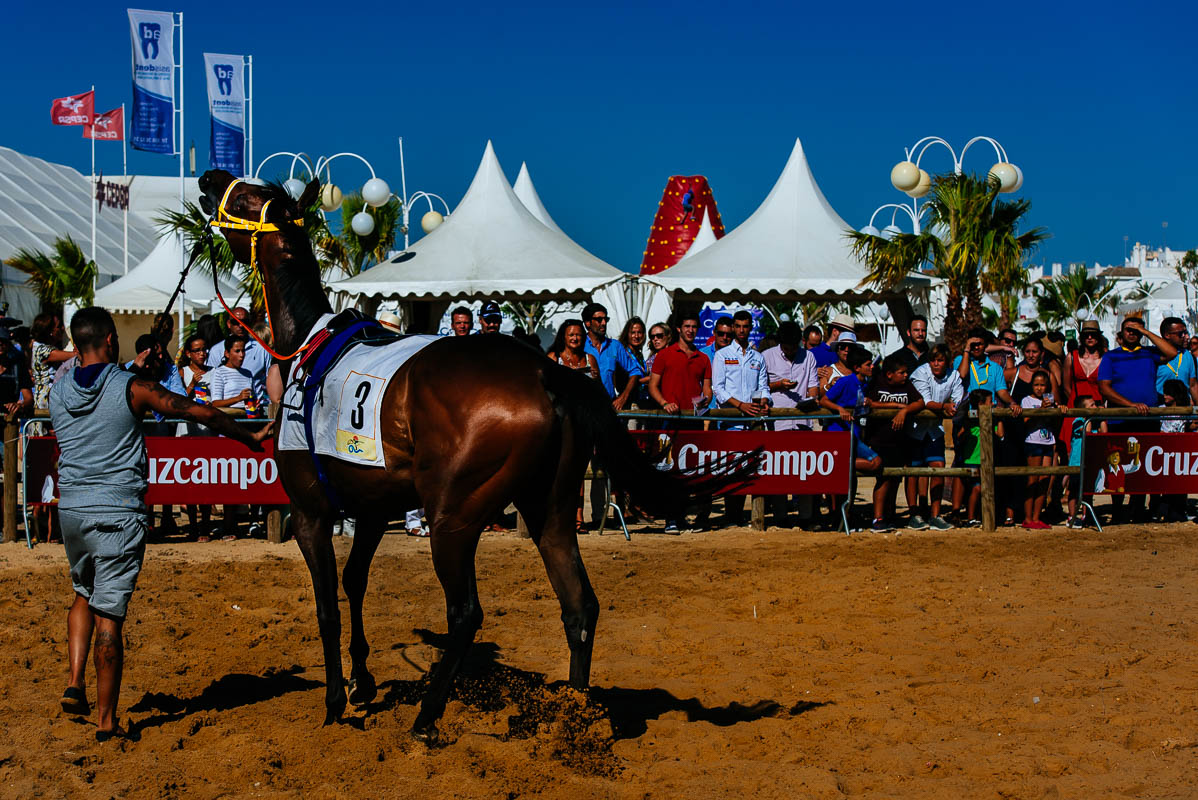 Horse Racing in Sanlucar de Barrameda - Anabel Vargas Photography2